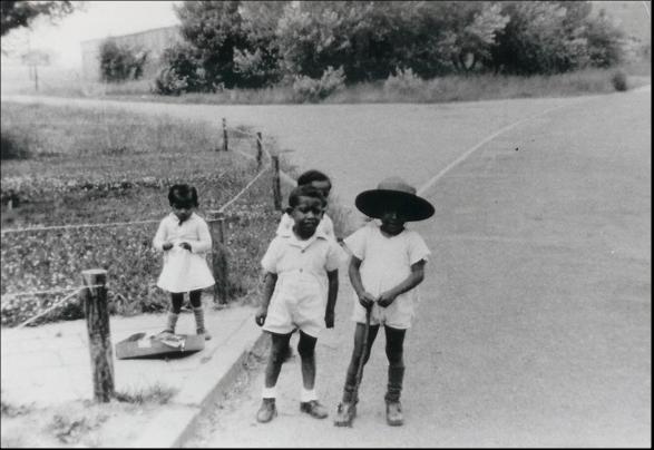 1960 Ambonezen.png